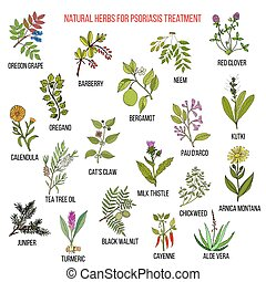 Best natural herbs for psoriasis treatment. Hand drawn...
