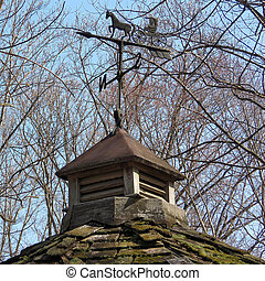 Weather vane in Mclean, USA, March 18, 2017