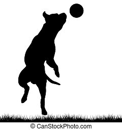 Dog playing with ball - Dog silhouette playing with ball