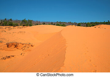 Landscape of the Red Dunes. Neighborhood of Muine village,...