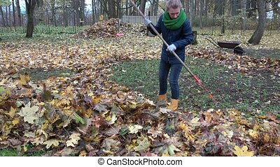 woman rake autumnal leaves with big red rake in backyard. 4K...