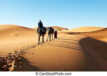 Man walking through desert dunes - Picture of man walking...