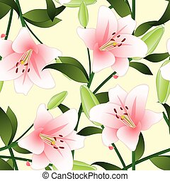 Lilium candidum, the Madonna lily or Pink Lily on Beige...