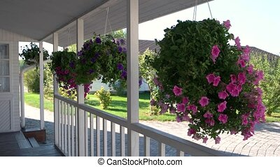 Flowers hanging on the porch. House of white color. Buy...