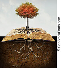 Knowledge Roots - Conceptual image representing a rooted...