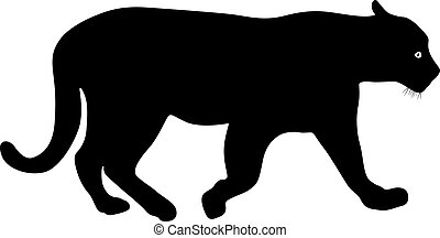 Silhouette beautiful panther on a white background.