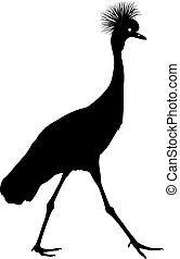 Silhouette bird crane on a white background.