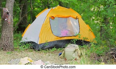 A boy in a tent in the forest. - Camping in the forest. The...