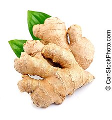 Ginger root . - Ginger root in isolated white background.