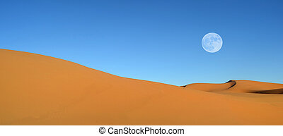 Beautiful sand dunes and blue sky