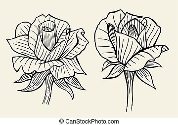 flower set of rose