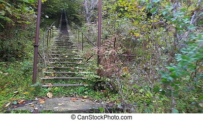 Moving downstairs by the iron staircase through the wild...