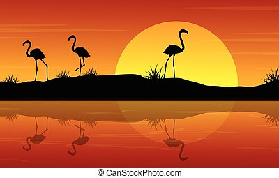 Vector illustration of flamingo at sunset scenery