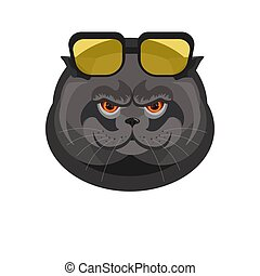 Black cat with sunglasses portrait isolated on white - Black...