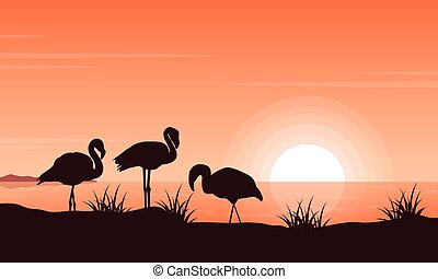 Vector illustration of flamingo on riverbank at sunset