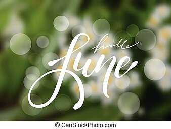 Hello June hand drawn lettering design isolated on a blurred floral background.