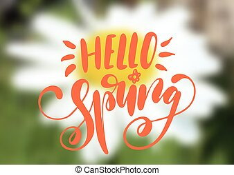 Hello spring hand drawn lettering design isolated on a blurred floral background.