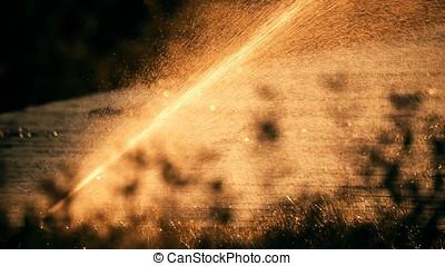Diagonal Water Spraying Sunset Back Lit Sprinkler - Sunset...