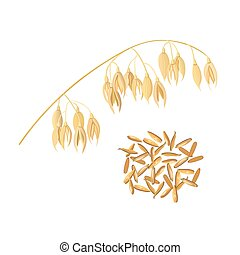 Oat ears of grain and bran. Golden spike and corn - Oat ears...