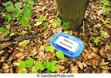 geocaching concept with cache box in nature