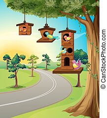 Birds in birdhouse on tree