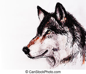 Drawing wolf on old paper, original hand draw. - Drawing...