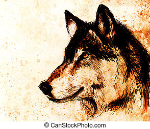 Drawing wolf on old paper, original hand draw. Color effect....