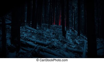 Red Flare Lights Up Snowy Forest At Night - Flare is lit far...