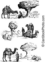 desert landscape with arab and camel next to statue face, touristic hand drawn illustration of exploring in the dust, old arabic man on camelback
