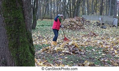 leaves lie on ground under tree and farmer woman rake...