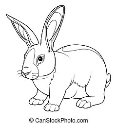 Rabbit Coloring Page - Coloring Page rabbit. Hand Drawn...