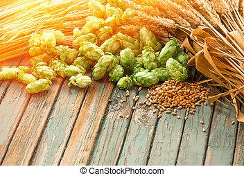 Green hops, malt, ears of barley and wheat grain,...