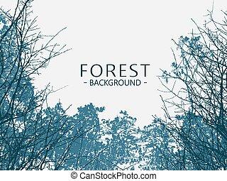 Wild forest background