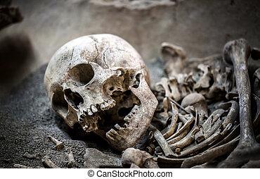 Skeleton Dead Body Head