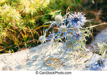 Wedding rings with stones Sea holly in the background. Wedding j
