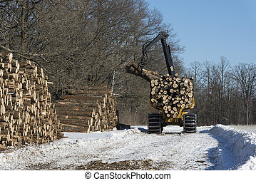 Logger with Logs - A logger with a load of oak logs in...