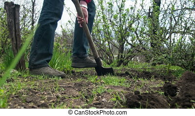 Young Farmer Man Digs Ground with Old Dirty Shovel in the...