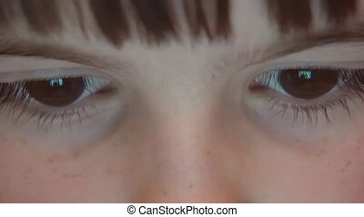 Kid's Eyes Browsing Tablet PC - Closeup night shot of kid's...