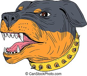 Rottweiler Guard Dog Head Aggressive Drawing - Drawing...