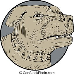 Rottweiler Guard Dog Head Angry Drawing - Drawing sketch...