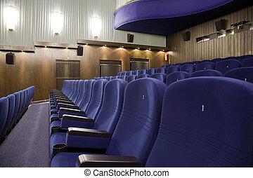 Cinema interior - Seat 1 in line of of cinema auditorium...