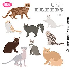 New collection cat breeds_1 - Cat breeds icon set flat style...
