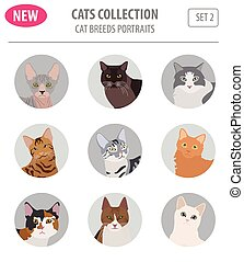 Cat breeds icon set flat style isolated on white. Create own...