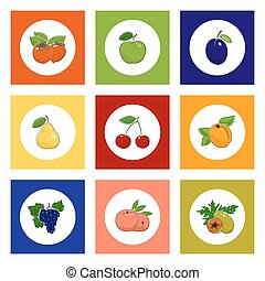 Round Fruit and Berry Icons on Colorful Background - Fruit...
