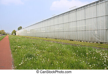 Greenhouses in Holland
