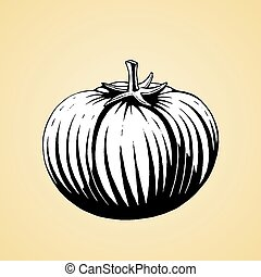 Ink Sketch of a Tomato with White Fill