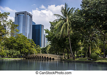 Amazing view of tropical park - Picturesque view of tropic...
