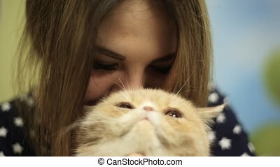 An Asian girl woman plays strokes a Siamese beige cat, then...