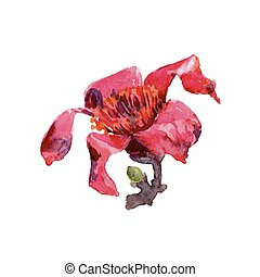 Red flower watercolor tropical leaves isolated