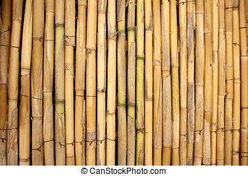 photo de stock de sec bambou tiges dry tiges de bambou blanc fond csp24824821. Black Bedroom Furniture Sets. Home Design Ideas